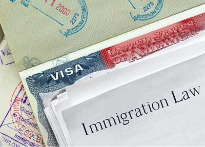 Virtual assignments and immigration law